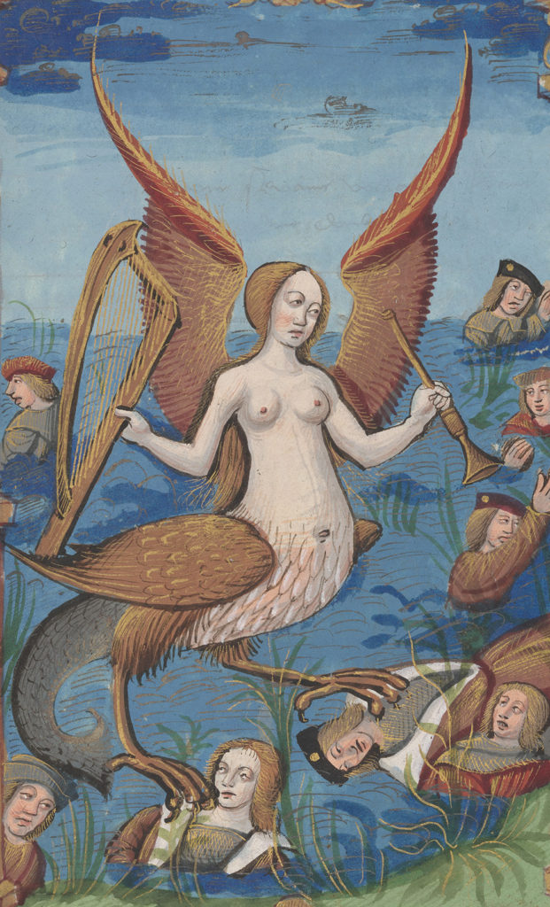 A siren is depicted at the edge of a body of water she has a human upper body with angel wings and hold in one hand a harp and the other a trumpet. Her lower half is bird like with a mermaid tail. Underneath her talons lie the bodies of dead men.