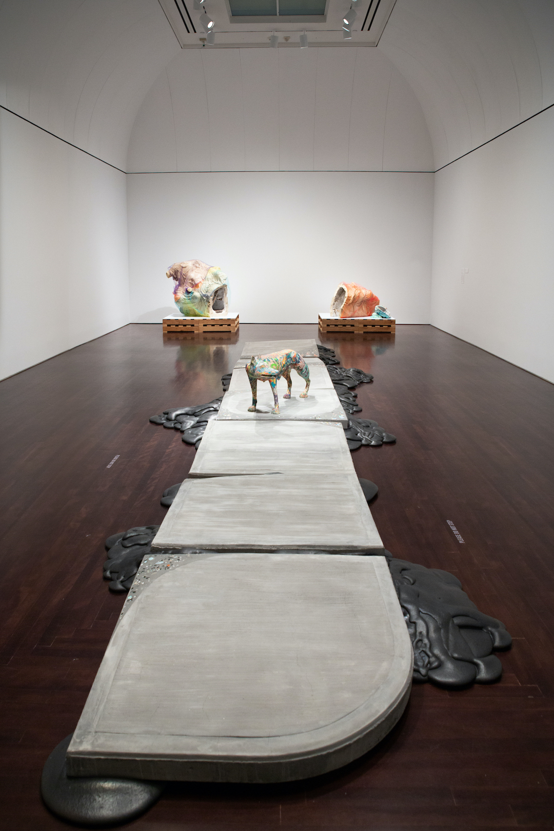 Installation view of Lily Cox-Richard: She-Wolf + Lower Figs. at the Blanton Museum of Art. Photo by Manny Alcalá.