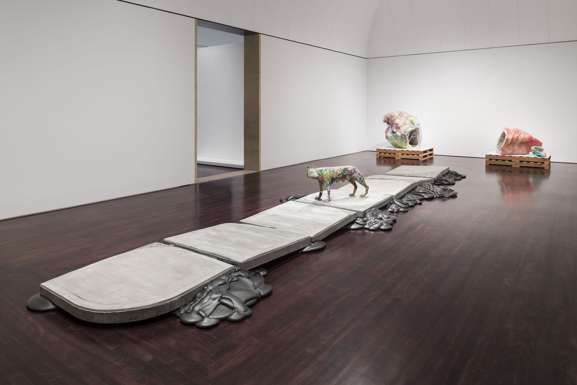 Installation view of Lily Cox-Richard: She-Wolf + Lower Figs. at the Blanton Museum of Art. Photo by Colin Doyle.